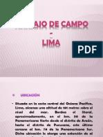 Trabajo de Campo Lima