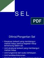 Sel 2