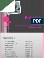 Bivalvia Group