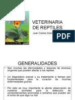 veterinaria de reptiles