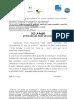 Declaratie Proprie Raspundere Grup Tinta
