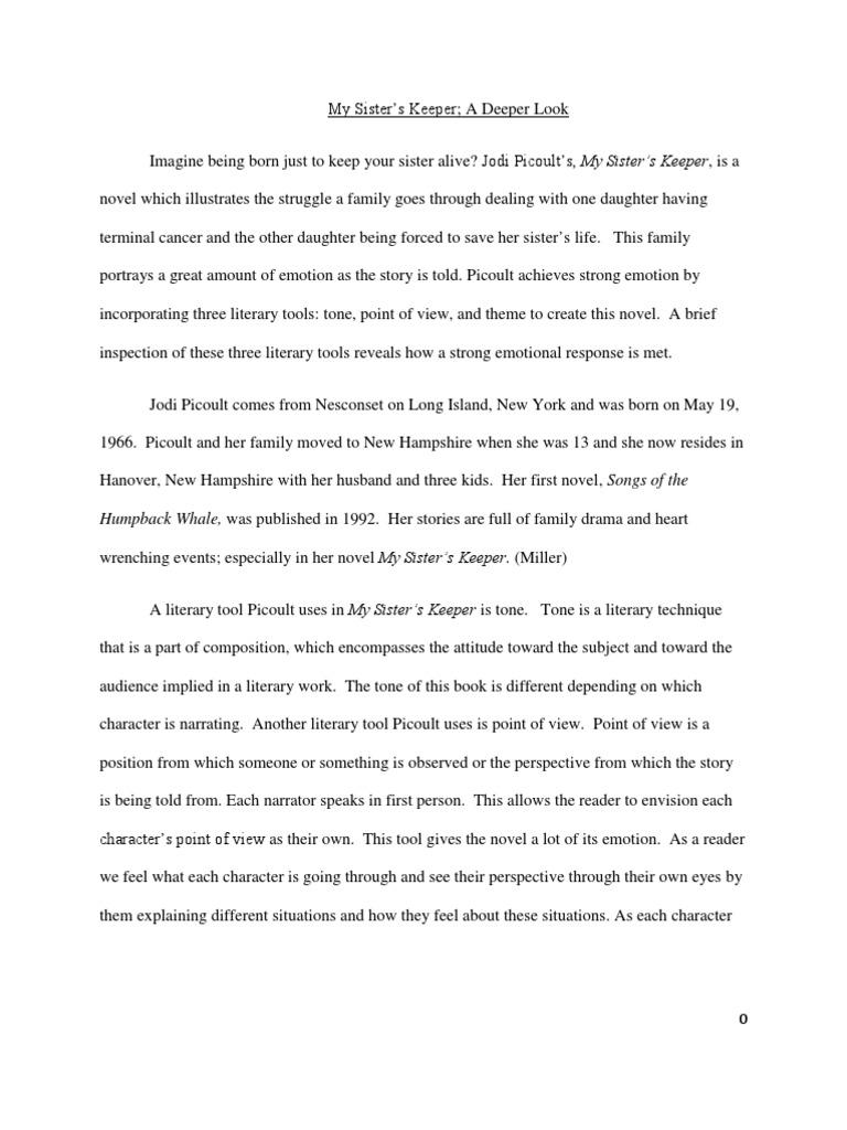 novel theme essay