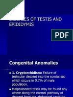 Male Genital System_pathology (Lect 10-12)