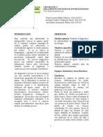 Laboratorio 4 Aislamiento de Hongos Fitopatogenos
