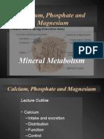 Calcium, Phosphate and Magnesium