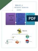 Metodología en la construcción de la variable ambiental de las Cartas Orgánicas Municipales, utilizando talleres con los diferentes actores sociales.