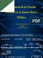 PRUEBA PERICIAL-Importancia en El Juicio Oral