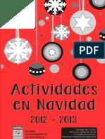 Navidad Cultural de Briviesca 2.012 - 2.013