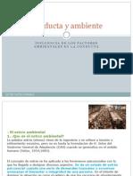 Influencia de Los Factores Ambientales en La Conducta