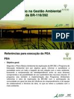 Educação na Gestão Ambiental da BR-116/392