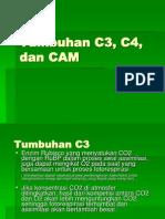 10. Tumbuhan C3 C4 Dan CAM