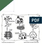 Mapa del Tesoro de Cati.pdf