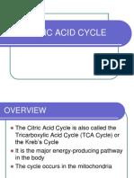 citric acid presentation