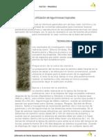 12 Establecimiento y utilización de leguminosas tropicales