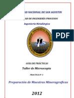 GUIA DE MICROSCOPIA N° 3