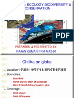 Rajan Biodiversty on Chilka