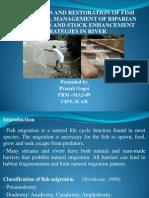 Fish Passes,Riparian Vegetation and Stock Enhancement in River