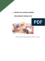 Teoria y Praxis Curricular Ensayo