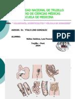 Colostomía - Nuñez G..ppt