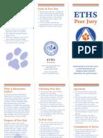 PeerJury Final Pamplet