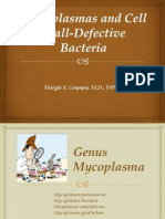 Mycoplasmas and Cell-Wall Defective Bacteria