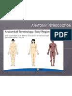 Anatomy Body Region & Planes-scribd