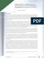 García 2010. Continuidad, cambio cultural y complejización entre cazadores recolectores del centro sur de Chile