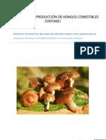 Manual Producción de hongos comestibles.pdf