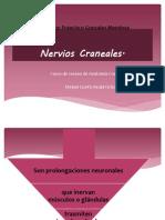 nervioscraneales-120723071044-phpapp01