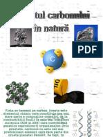 circuitul carbonului in natura
