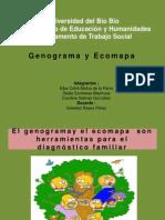Genograma y ecomapa