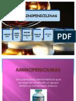 Amino Penicilin As