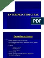 Enterobacteriacae (1)