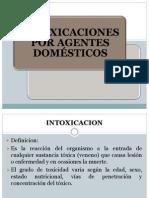 intoxicacion domestica