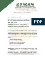 Aceprocacao Acta Directorio finales 2012