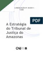 Plano Estratégico do TJAM (2010-2014)