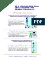 Esercizi-Per-Migliorare-Mobilita-Articolare-E-Allungamento-Muscolare