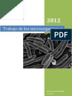 Trabajo Microorganismos