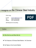 Chinese Steel Industry