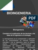 Bioinformatica bioingenieria