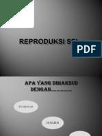Reproduksi Sel 3