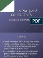 PROTEZA PARTIALA SCHELETATA