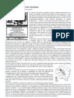 Pedemontana e Rischio Diossina - Relazione Bai