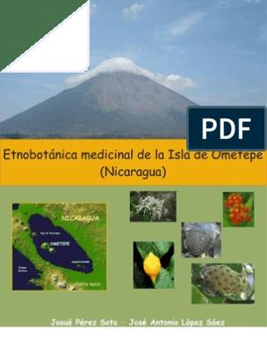 masaje de próstata chino monteverde national park