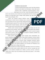 Pengolahan Dan Analisis Data Kualitatif