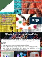Como llevar información de muestras microbiológicas