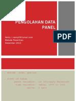 Pengolahan Data Panel