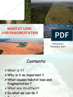 Habitat Loss and Fragmentation