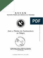 Aves de Fuerteventura en peligro de extinción