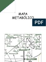 10 - Mapa metabólico